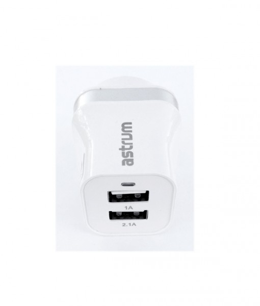 Dual USB Wall Charger Silver